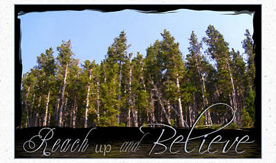 Poster featuring the photograph Reach Up And Believe by Susan Kinney