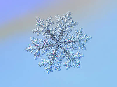 Poster featuring the photograph Real Snowflake - Hyperion by Alexey Kljatov