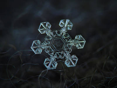 Poster featuring the photograph Real Snowflake - Ice Crown New by Alexey Kljatov