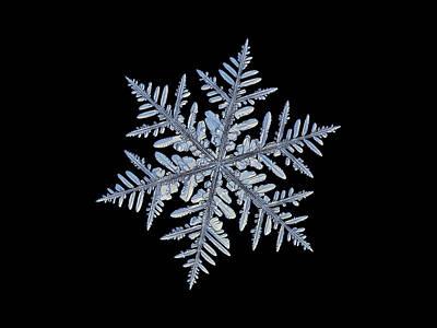 Real Snowflake - Silverware Black Poster