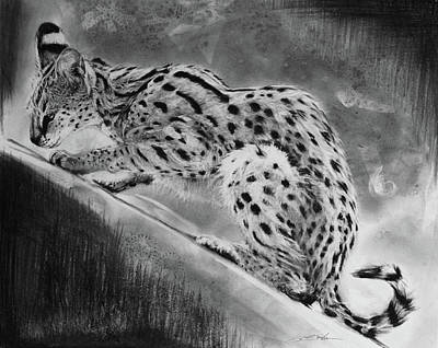 Recoil - Serval Poster