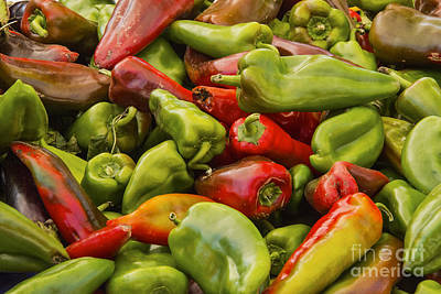 Red And Green Peppers Poster