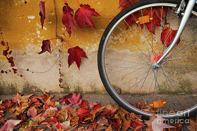 Poster featuring the photograph Red Autumn by Yuri Santin