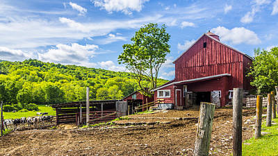 Poster featuring the photograph Red Barn And Cows by Paula Porterfield-Izzo