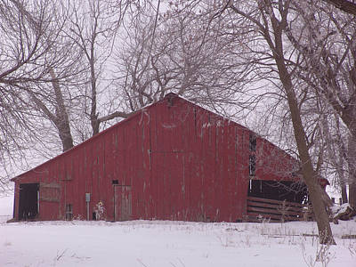 Red Barn Trees Snow Poster