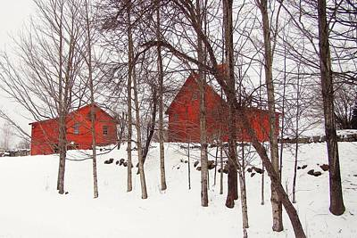 Red Barns Poster by Betsy Zimmerli