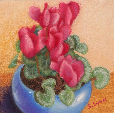 Red Cyclamen Blue Pot Poster