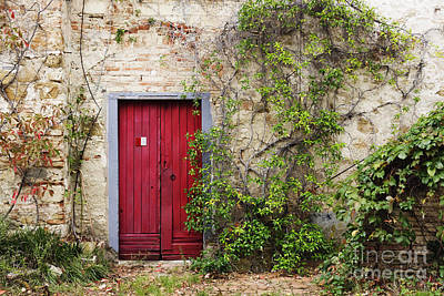 Red Door In Old Brick And Stone Cottage Poster