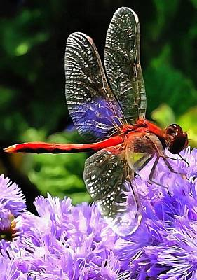 Red Dragonfly On Violet Purple Flowers Poster by Tracey Harrington-Simpson