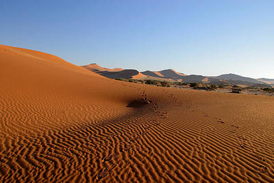 Poster featuring the photograph Red Dunes Of Namibia by Riana Van Staden