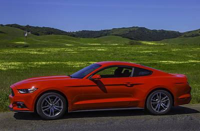 Red Ford Mustang Poster by Garry Gay