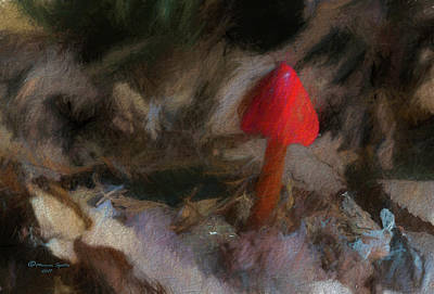 Red Forest Mushroom Poster