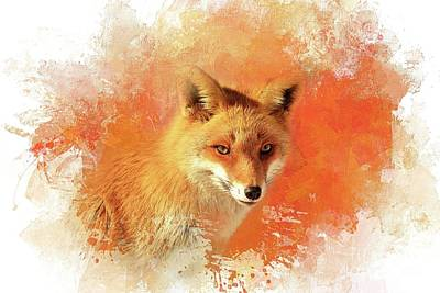 Red Fox Poster by Eva Lechner