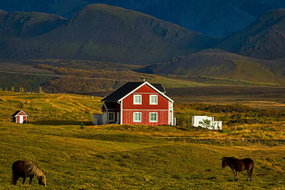 Red House And Horses - Iceland Poster by Stuart Litoff