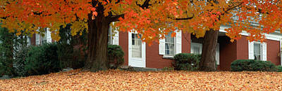 Red House And Maple Trees Along Route Poster by Panoramic Images