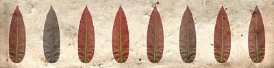 Red Leaf Horizontal Poster by Sumit Mehndiratta
