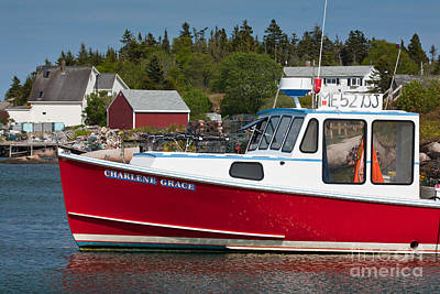 Red Lobster Boat Poster