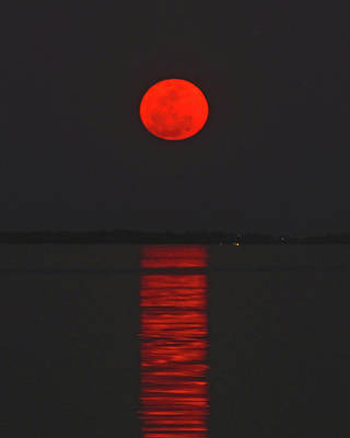Red Moon Rising  Poster