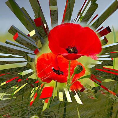 Red Poppies Go Digital Poster