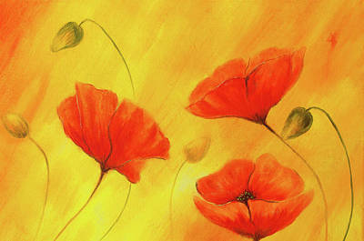 Red Poppy On Orange Background. Red Flower On Abstract Color Background. Red Poppies Poster by Jozef Klopacka