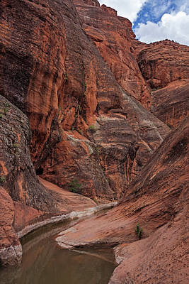 Red Reef Slot Canyon Poster by Loree Johnson