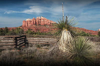 Poster featuring the photograph Red Rock Formation In Sedona Arizona by Randall Nyhof