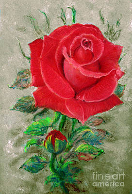 Red Rose Poster by Jasna Dragun