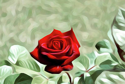 Red Rose Love Image Hd 5225_2 Poster by S Art
