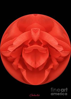 Red Rose Sphere Poster