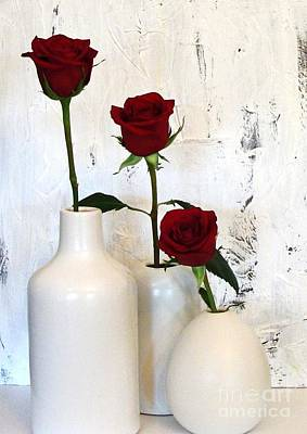 Red Roses On White Poster