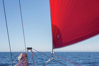 Poster featuring the photograph Red Sail On A Catamaran by Clare Bambers