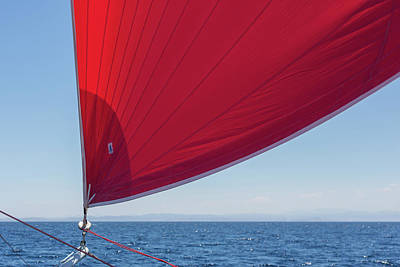 Poster featuring the photograph Red Sail On A Catamaran 2 by Clare Bambers