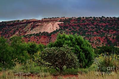 Poster featuring the photograph Red Terrain - New Mexico by Diana Mary Sharpton