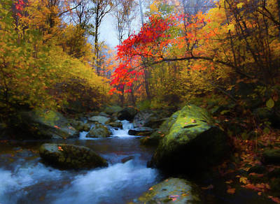 Red Tree In White Oak Canyon Poster