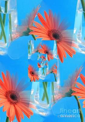 Redundant Gerbera Daisy Poster by Jean Clarke