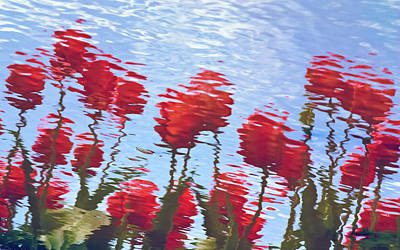 Reflected Tulips Poster