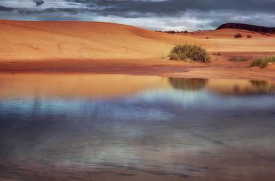 Reflection - 1 - Coral Pink Sand Dunes - Utah Poster by Nikolyn McDonald