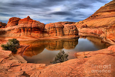 Reflections In The Red Rock Desert Poster by Adam Jewell