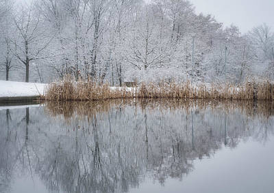 Reflections In Winter Poster by Miguel Winterpacht