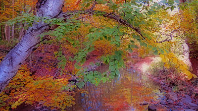 Reflections Of Autumn Poster by Kay Novy