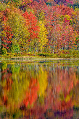 Canaan Valley West Virginia Reflections Poster
