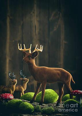 Reindeer Poster