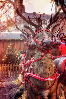 Reindeer At Copenhagen Christmas Market Poster