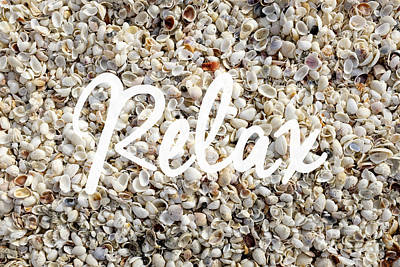 Relax Seashell Background Poster by Edward Fielding