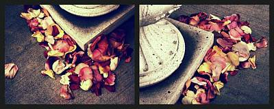Remnants Of Roses Diptych Poster