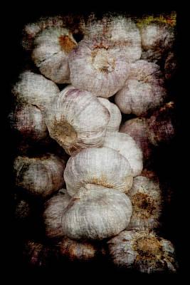 Renaissance Garlic Poster