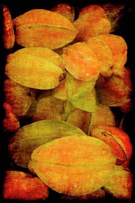 Renaissance Star Fruit Poster