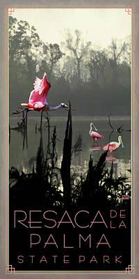 Resaca De La Palma State Park Poster by Jim Sanders