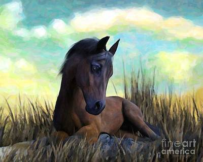 Poster featuring the painting Resting Foal by Sandra Bauser Digital Art