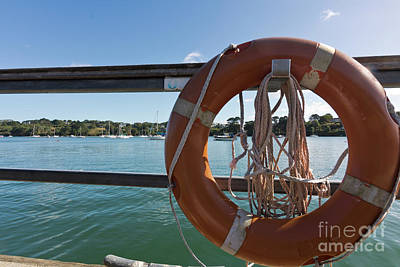 Restronguet Creek Life Saver Poster by Terri Waters
